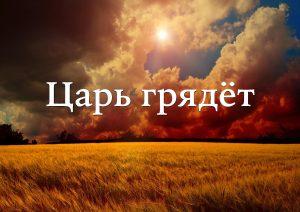 tsar-gryadot